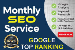 i-will-provide-monthly-best-seo-service-high-ranking-in-google