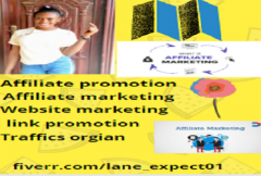 i-will-drive-niche-targeted-usa-traffic-real-organic-web-guest