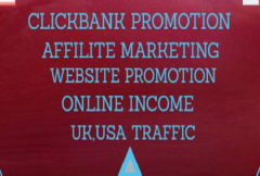 i-will-market-your-affiliate-link-promotion-to-usa-uk-traffic-clickbank